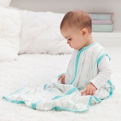 Aden + Anais Bamboo Sleeping Bag CLEARANCE for $9 ONLY!!