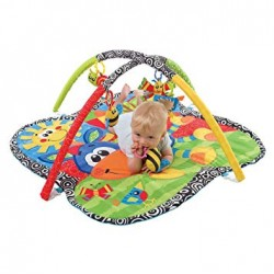 Playgro Clip Clop Activity Playgym