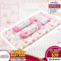 Babylove Premium 4 in 1 Mattress Set (100% Cotton)