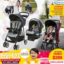 Graco Literider Click Connect Travel System - Stroller + Carseat (Etcher)