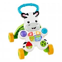 Fisher Price INFANT ZERBA WALKER Toy