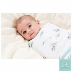 Aden + Anais Easy Swaddle Liam the Brave (Small / Medium) CLEARANCE for $9 ONLY!!